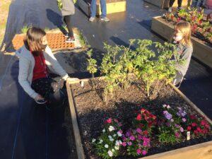 Children Garden 3
